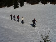 Guided snow shoe-hiking