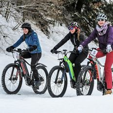 Winter e-bike tour through the Söllandl