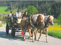 Carriage ride in Söll