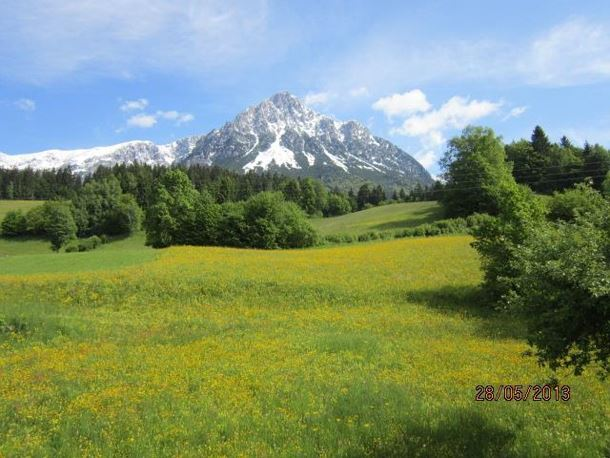 Aussicht von Appartement C Wilder Kaiser