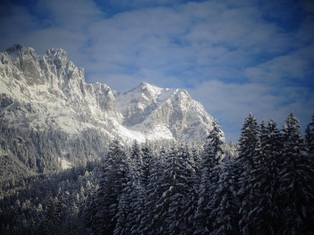 Winter Wilder Kaiser