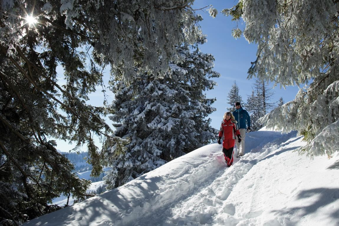 Über 140 Kilometer Winterwanderwege am Wilden Kais