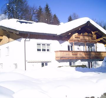 Haus Winter 2011 014