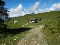 3-day mountain hut walk - stage 3